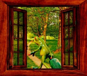 free画像,カエル,窓