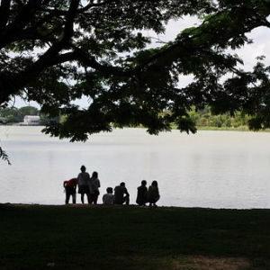 free画像,湖畔,大家族,シルエット