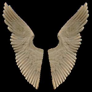 free画像,翼,大理石,両翼